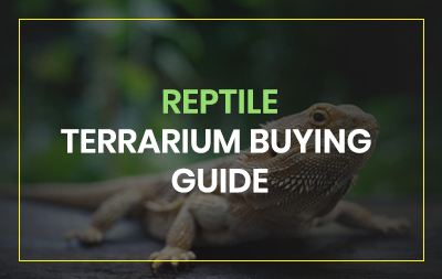 Reptile terrarium review guide