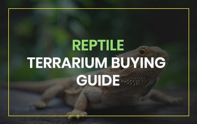 Reptile terrarium review guide